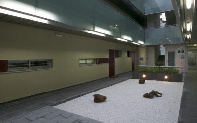 Pati Japonès Vila Fusté (Sabadell)